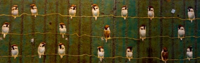 New work '13 On corrugated iron