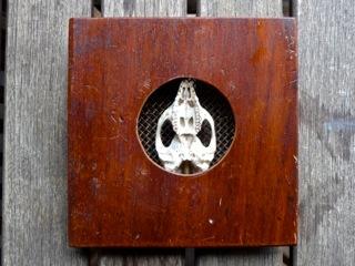 Handmade collectible with small animal skull $185