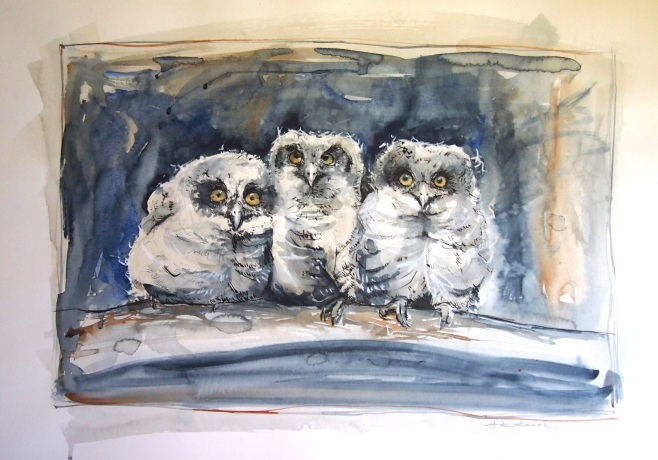 """Baby Owls"" original sold. Available as a Limited Edition Print."